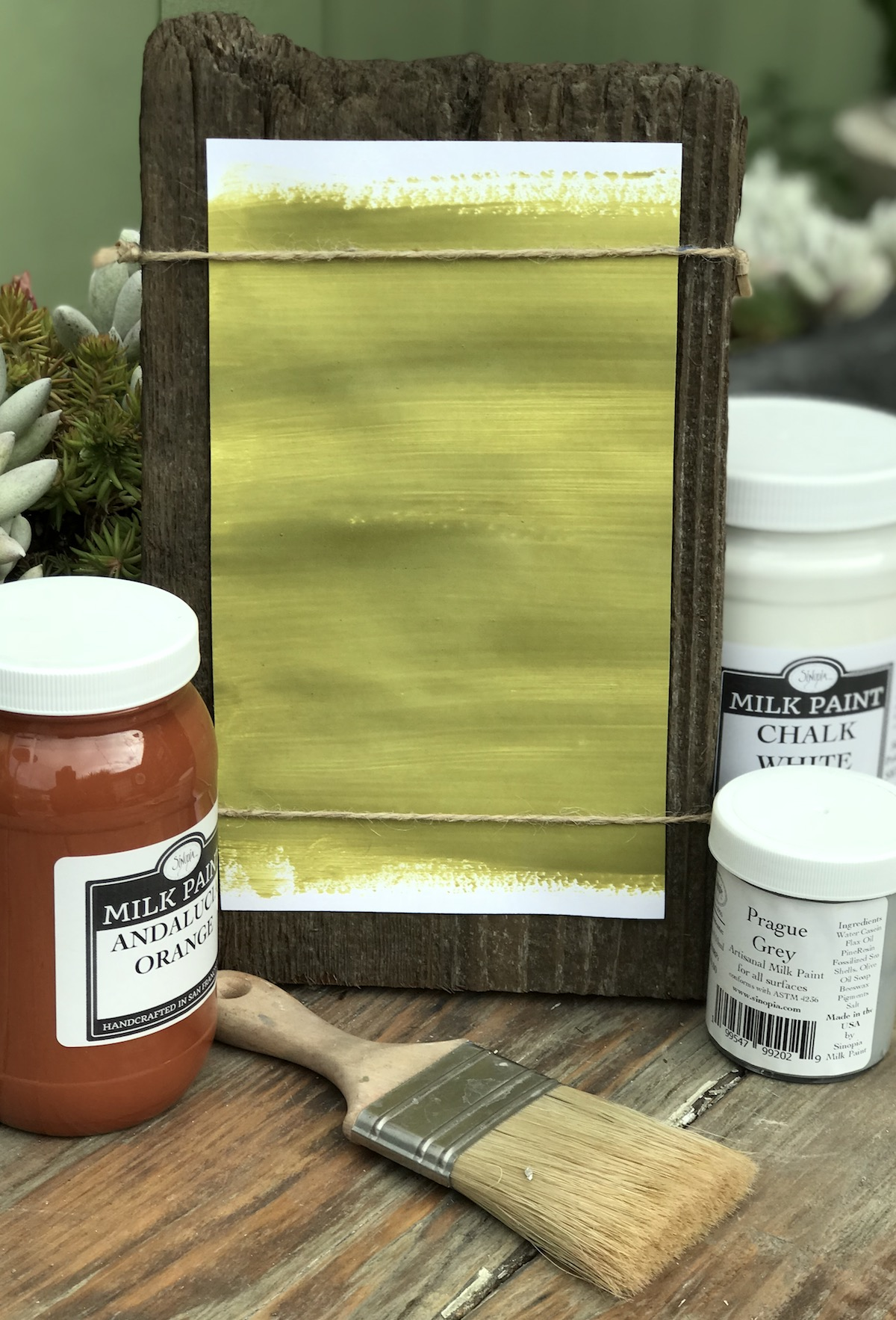 All Natural Artisanal Milk Paint (Casein) Kotinos Green
